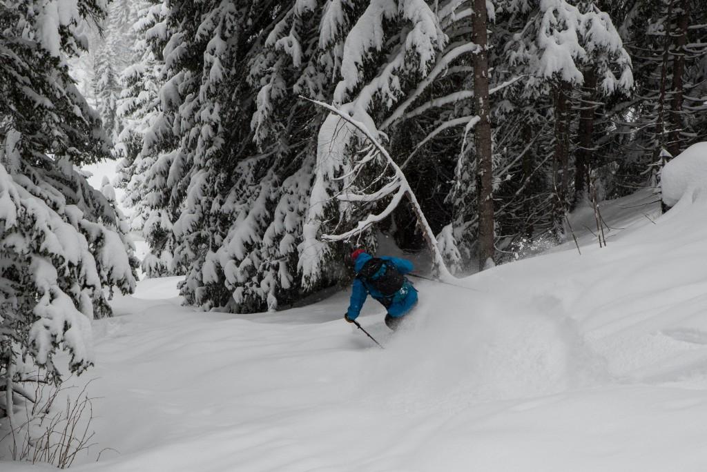 Du très bon ski en forêt sur l'itinéraire de montée